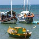 photos gratuites Photos libres de droit de bateaux. Photos gratuites de navires, voiliers, yachts, paquebots, barques, bateau de pêche...