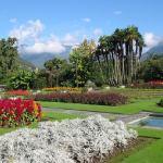 photos gratuites Photos gratuites de la Villa Taranto (Piémont - Italie), photos des jardins de la Villa Taranto...
