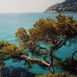 Foto libere Royalty Free foto della Spagna. Immagini di Barcellona, foto della isola di Maiorca, foto di Ibiza, immagini di Madrid...