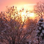 sunset-winter