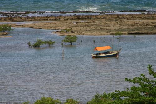 Bateau de pêche, Bateaux