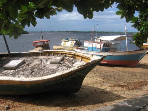 Bateaux de pêche, Bateaux