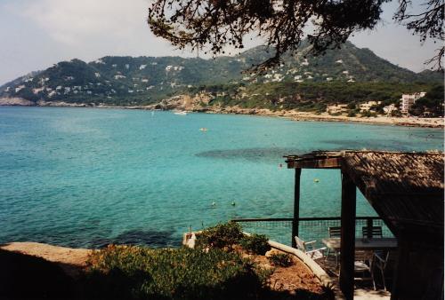 Majorca Island, Majorca island