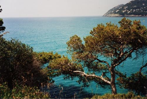 Île de Majorque