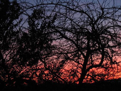 Sunset, Sunsets, sunrises (winter)