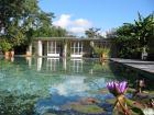 photographie gratuite Villa Taranto