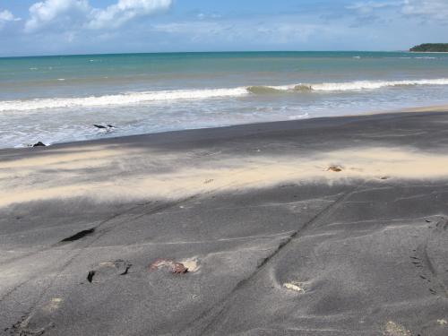 Spiaggia, Spiaggie
