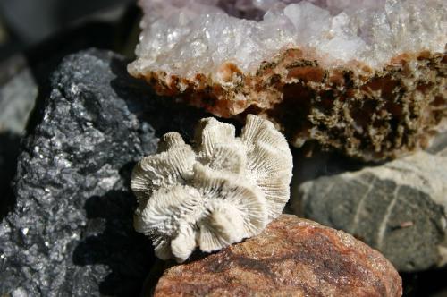 Mineraux, Minéraux
